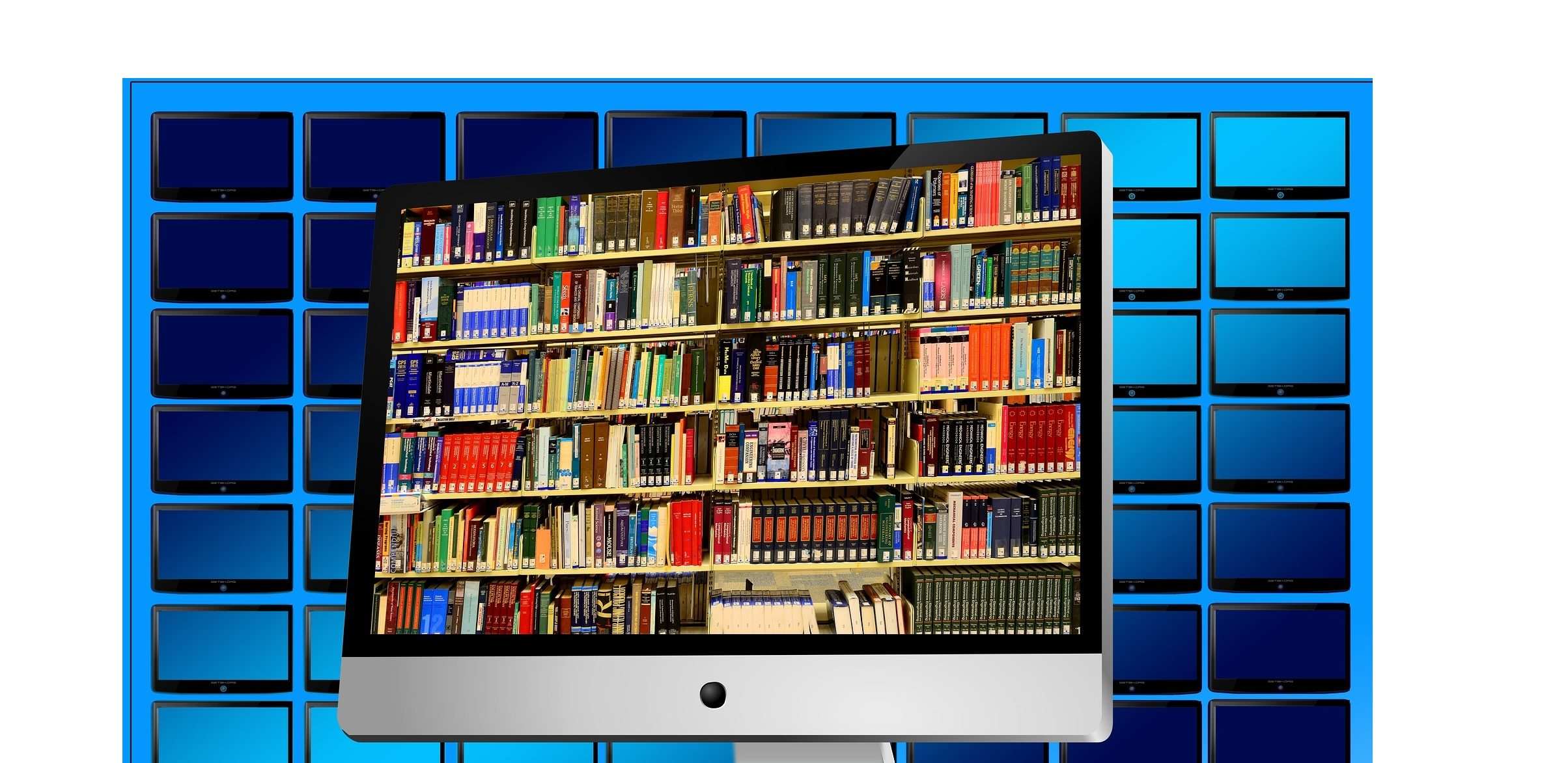 books displayed on a computer screen